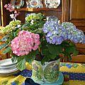 Mes compositions florales