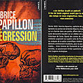 Regression - Fabrice Papillon