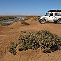 2a.Sahara atlantique marocain 2013