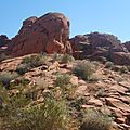 The Valley Of Fire (18)