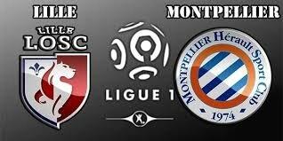Lille-Montpellier : Définition d'un supporter