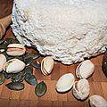 Laouen vraz: une chèvre folle, une chose rôtie aux graines de courge, pistaches, figues, marjolaine et miel... un grain de folie