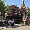 908 Commémoration du 14 juillet à La Cavalerie le 11/07/10