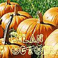Un bilan d'octobre pas très très épais ...