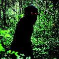 Oncle boonmee (celui qui se souvient de ses vies antérieures) (lung boonmee raluek chat) d'apichatpong weerasethakul - 2010