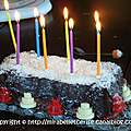 Gâteau d'anniversaire {à étages, sans gluten, fraise, citron, chocolat, coco, que du bon !}