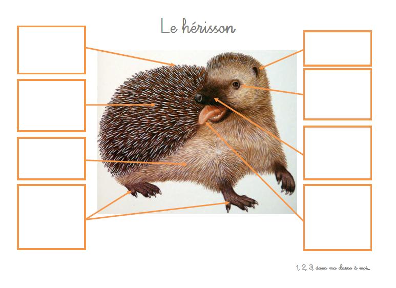 Windows-Live-Writer/Une-squence-Le-Nol-du-hrisson_E182/image_16