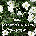 Le pouvoir des fleurs #5