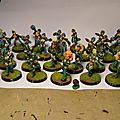 Elfes noirs blood bowl