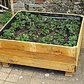 Un jardin potager en carré en palettes de bois