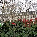 Versailles en vrac - Ca sent le <b>sapin</b>