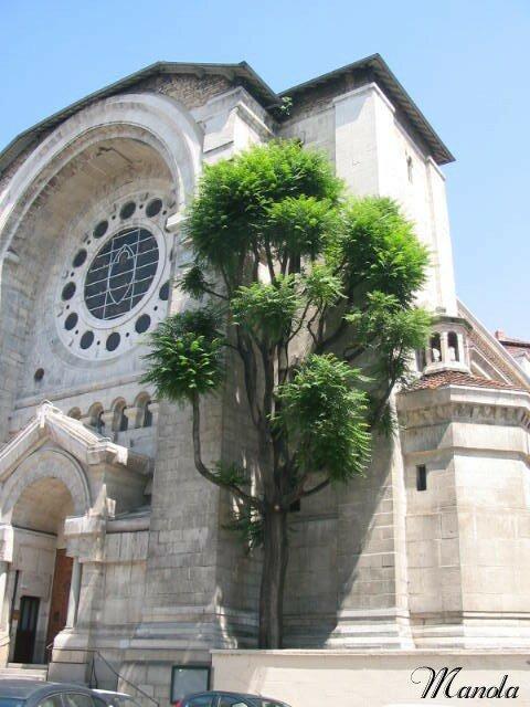 église lyonnaise
