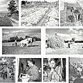 André dangoisse, exposition de photographies à falaise