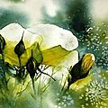 B. Anciennes Aquarelles : Les fleurs
