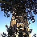 La tour saint-jacques s'ouvre au public