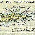 Les premiers contacts avec le <b>Timor</b>