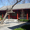 Traditional Style Hotel in <b>Beijing</b>
