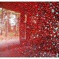 Perles rouges...