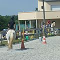 Jeux équestres manchots 2013 (277)