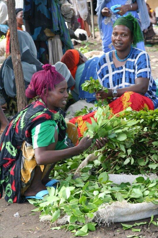 photos ethiopiedjibouti 238