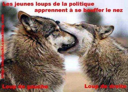 loups2