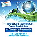 Congres sante environnement: les pathologies environnementales emergentes les 6&7 decembre a marseille