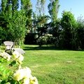 jardin juin 2015 app photo (20)