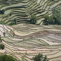 77 Avril 2009: le pays du sud des nuages, le Yunnan