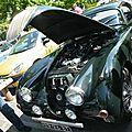 2009-Annecy-Tulipes-Jaguar XK 150-01