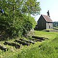 balade à cheval médiévale - Abbaye de Hambye (305)