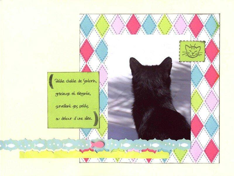 Petite chatte de Santorin