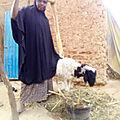 AJAK 2021 - Achat des Moutons à Crédit (MAC) du 05 Mars 2021 - quelques bénéficiaires