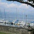 Le lac de Genève