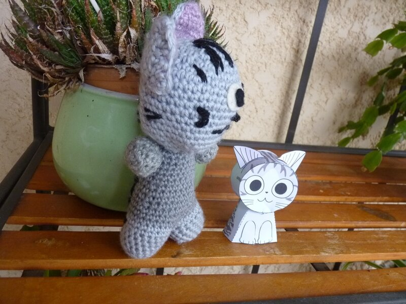 Chi le chat (3)