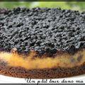 P'tit cheesecake brousse et myrtilles