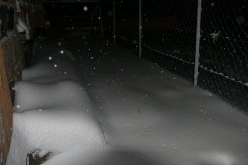 2008 12 10 La neige dans le balcon