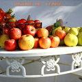 Automne , arrière saison et tomates