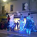 spectacle & lumieres (14)