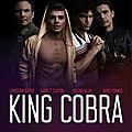 James franco dans l'univers du porno gay avec « king cobra »