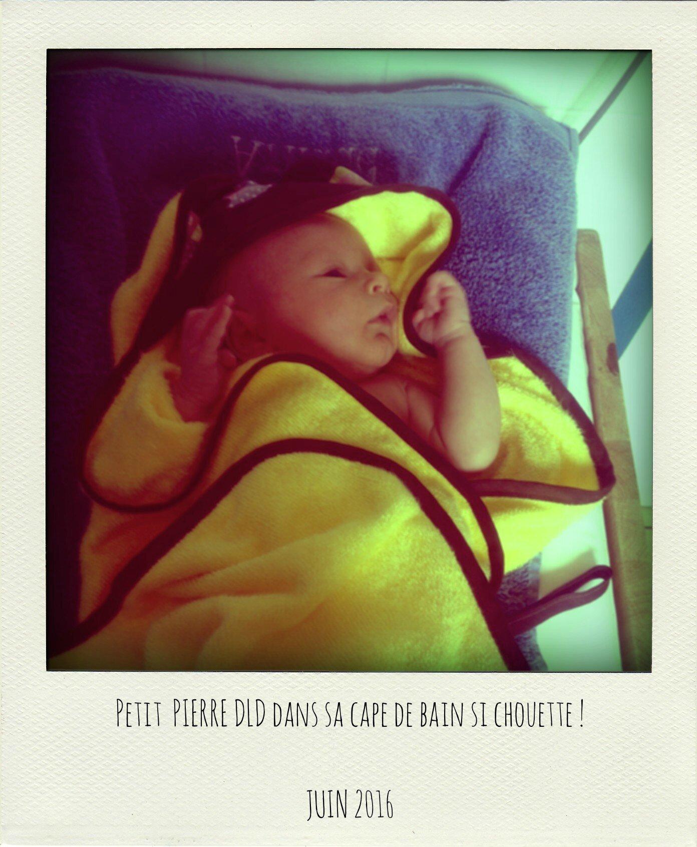 Petit Pierre DLD-pola
