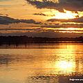Nocturnes autour de l'étang de Thau