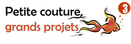 Petite couture grands projets 3