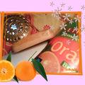 Savon Orange & Miel