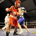 100-654-1-boxe feminine france russie novembre 2010