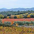 Le Mont Ventoux a revêtu ses couleurs chatoyantes