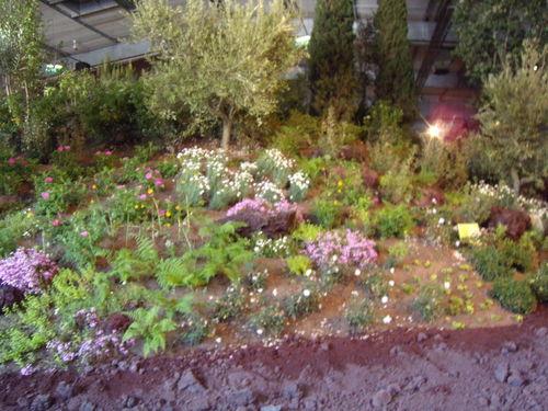 Floralies 183