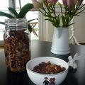 Granola maison et bio au chocolat et noix en tout genre
