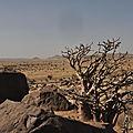 Au Mali 2011 n°7 Paysages de Youri