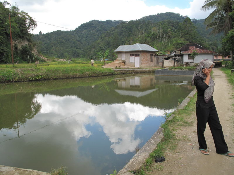 Parc nationnal de Batang Palupuh (Sumatra)