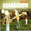 The pillows - Scarecrow 007